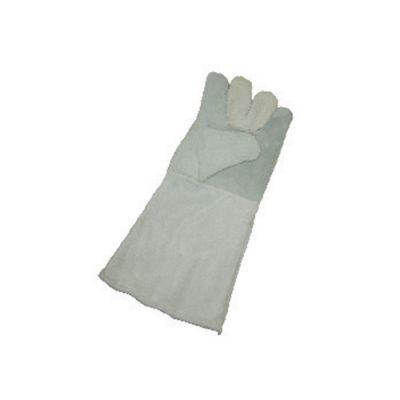 دستکش هوبارت ایرانی